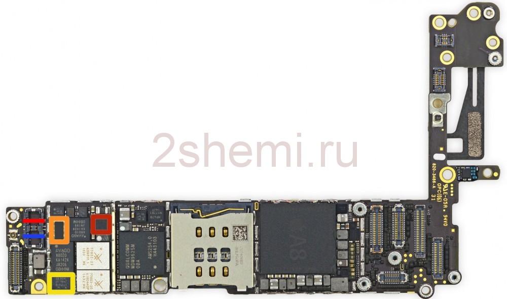 В сети появилась инженерная схема нового iPhone | 590x1000
